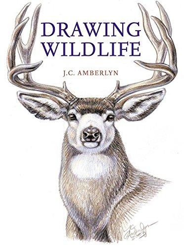 9780823023790: Drawing Wildlife