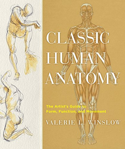9780823024155: Classic Human Anatomy: The Artist's Guide to Form, Function, and Movement