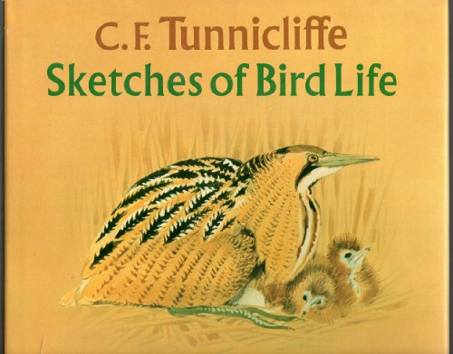 9780823048564: C. F. Tunnicliffe: Sketches of Bird Life