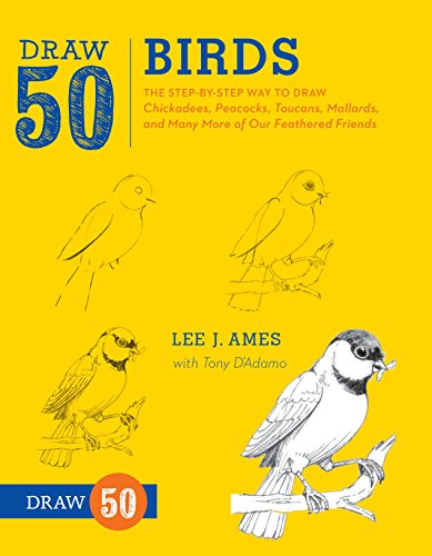 9780823085989: Draw 50 Birds: The Step-by-step Way to Draw Chickadees, Peacocks, Toucans, Mallards, and Many More of Our Feathered Friends
