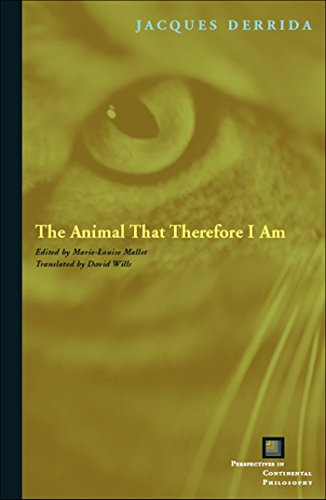 9780823227907: The Animal That Therefore I Am (Perspectives in Continental Philosophy (Hardcover Unnumbered))