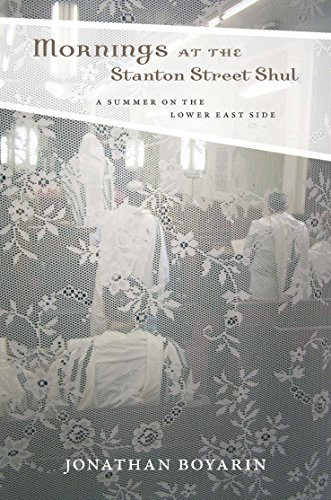 9780823239009: Mornings at the Stanton Street Shul: A Summer on the Lower East Side