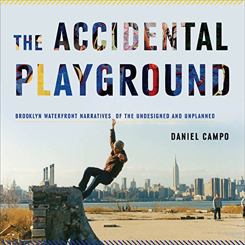 9780823251865: The Accidental Playground: Brooklyn Waterfront Narratives of the Undesigned and Unplanned