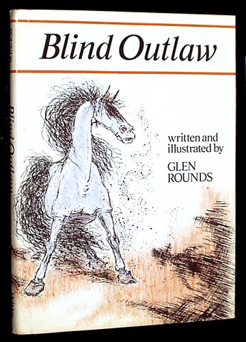 9780823404230: Blind Outlaw