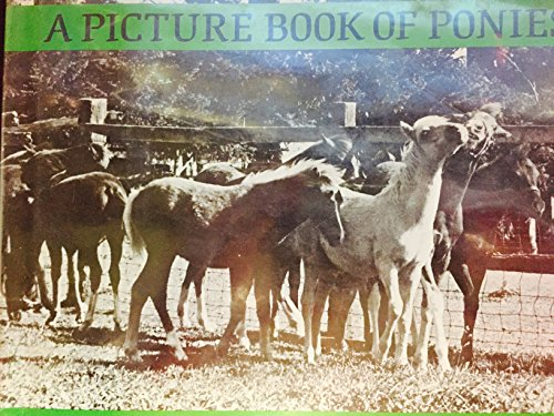 A Picture Book of Ponies (9780823405015) by Dorothy Hinshaw Patent