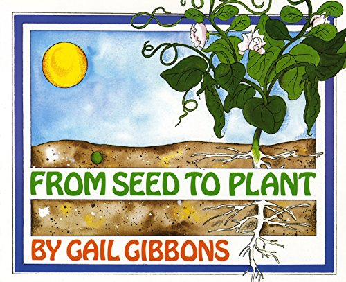 9780823410255: From Seed to Plant