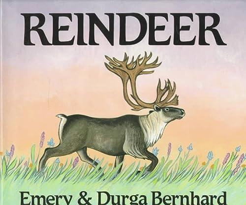 9780823410972: Reindeer