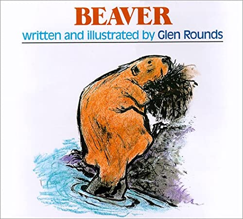 9780823414406: Beaver