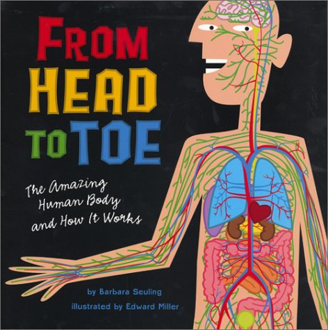 9780823416998: From Head to Toe: The Amazing Human Body and How It Works