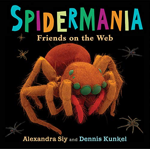 9780823428717: Spidermania: Friends on the Web