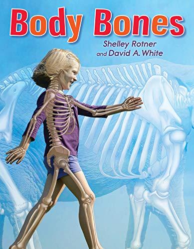 9780823431625: Body Bones