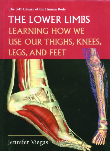 9780823935338: The Lower Limbs: Learning How We Use Our Thighs, Knees, Legs, and Feet (3-D Library of the Human Body)