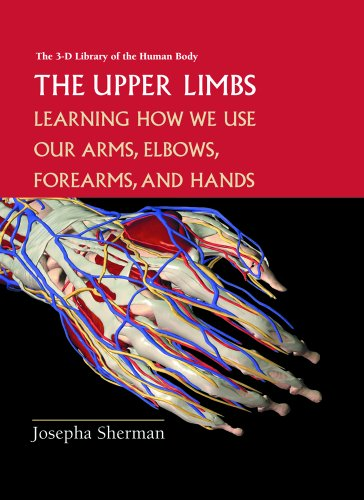 9780823935376: The Upper Limbs: Learning About How We Use Our Arms, Elbows, Forearms, and Hands (3-D Library of the Human Body)