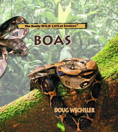 Boas (Really Wild Life of Snakes): Wechsler, Doug