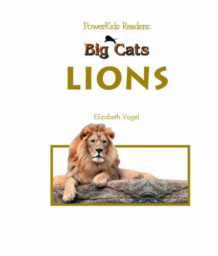 9780823960217: Lions (Big Cats)