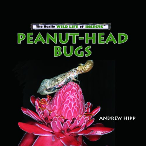 9780823962426: Peanut-head Bugs (Really Wild Life of Insects)
