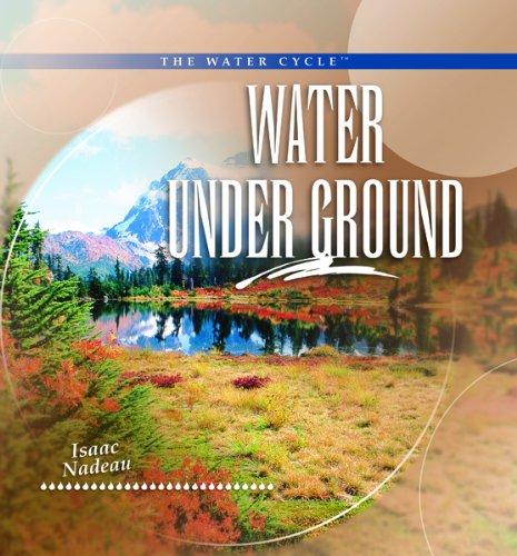 9780823962631: Water Under Ground