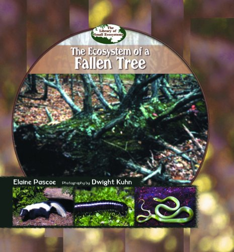 The Ecosystem of a Fallen Tree (Library of Small Ecosystems): Pascoe, Elaine; Kuhn, Dwight