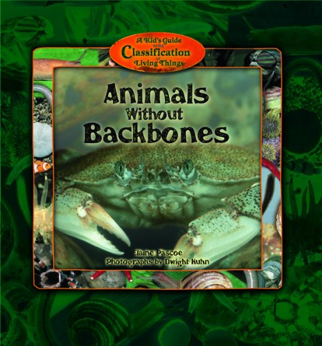 9780823963119: Animals Without Backbones (Kid's Guide to the Classification of Living Things)