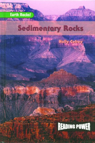9780823964659: Sedimentary Rocks (Earth Rocks!)