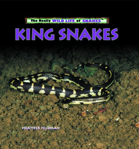 9780823967230: King Snakes (Really Wild Life of Snakes)