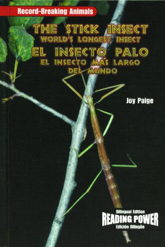 9780823968978: The Stick Insect/El Insecto Palo: The World's Longest Insect/El Insecto Mas Largo del Mundo (Record-Breaking Animals)