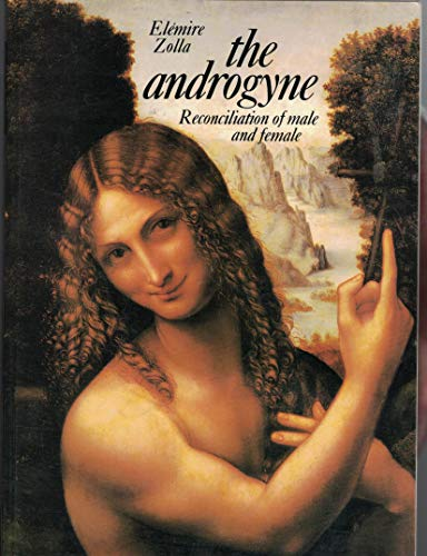 9780824500658: The Androgyne: Reconciliation of Male and Female (Androgyne Ppr)