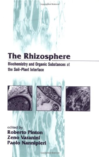 9780824704278: The Rhizosphere: Biochemistry and Organic Substance at the Soil-Plant Interface: Biochemistry and Organic Substance at the Soil-Plant Interface (Books in Soils, Plants, and the Environment)