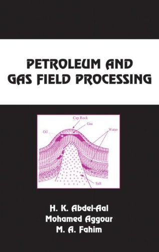 9780824709624: Petroleum and Gas Field Processing (Chemical Industries)