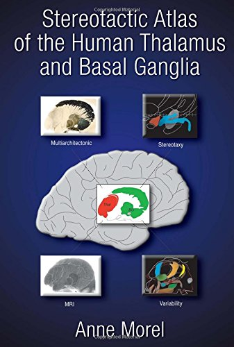 9780824728946: Stereotactic Atlas of the Human Thalamus and Basal Ganglia