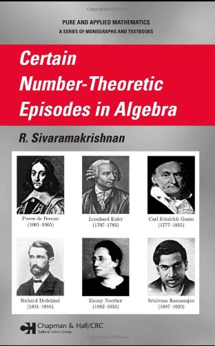 9780824758950: Certain Number-Theoretic Episodes In Algebra (Chapman & Hall/CRC Pure and Applied Mathematics)