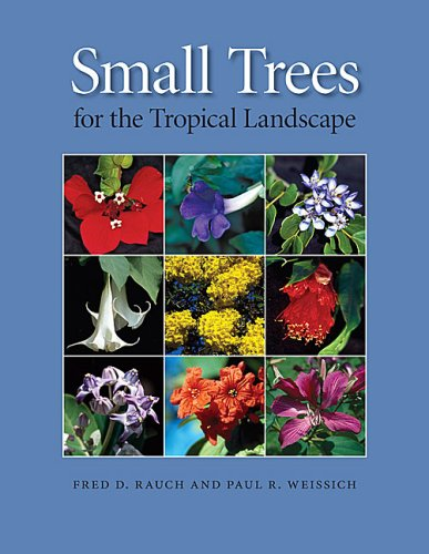 9780824833084: Small Trees for the Tropical Landscape