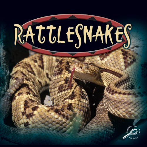 Rattlesnakes (Amazing Snakes Discovery Library): Edited