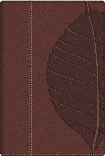 9780825419836: Biblia de Estudio: Vidas Transformadas-Rvr 1960