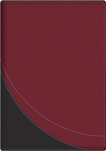 9780825419997: La Biblia en orden cronológico (Spanish Edition)