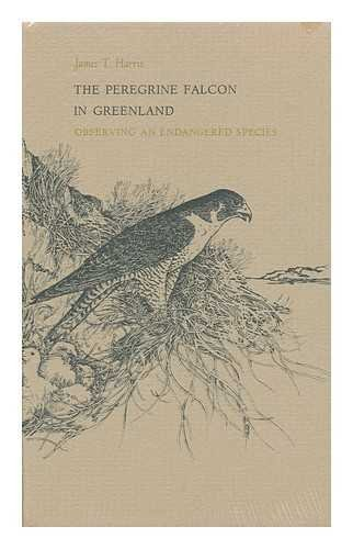 Peregrine Falcon In Greenland : Observing an Endangered Species: Harris, James T.