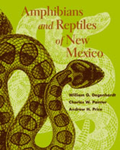 Amphibians and Reptiles of New Mexico (Paperback): William G. Degenhardt