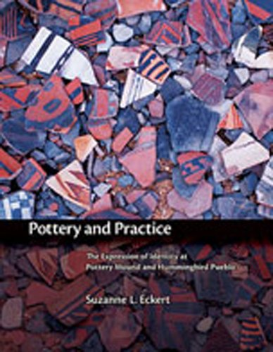 9780826338341: Pottery and Practice: The Expression of Identity at Pottery Mound and Hummingbird Pueblo