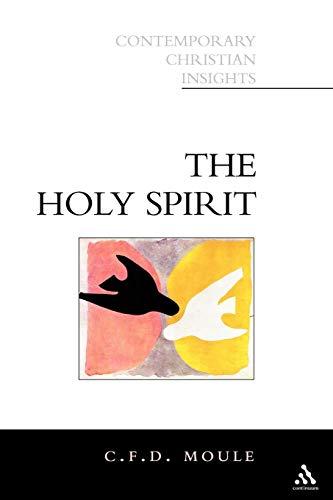 9780826451040: Holy Spirit (Contemporary Christian Insights)