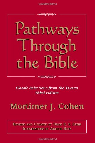 9780827603011: Pathways Through the Bible