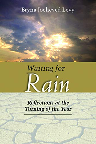 9780827608412: Waiting for Rain: Reflections at the Turning of the Year