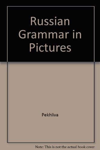 9780828537353: Russian Grammar in Pictures