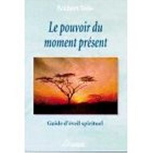 9780828877039: Le Pouvoir du Moment : Guide de l'Eveil Spirituel (French edition of The Power of Now : Guide to Spiritual Enlightenment