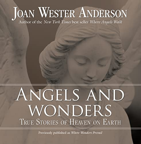 9780829427332: Angels and Wonders: True Stories of Heaven on Earth