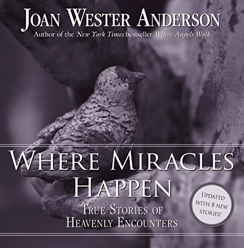9780829429039: Where Miracles Happen: True Stories of Heavenly Encounters
