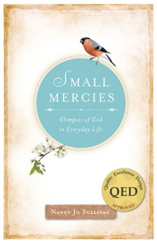 9780829436952: Small Mercies: Glimpses of God in Everyday Life