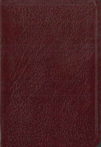 9780829738971: Biblia de Bolsillo-NIV = Spanish Pocket Bible-NIV
