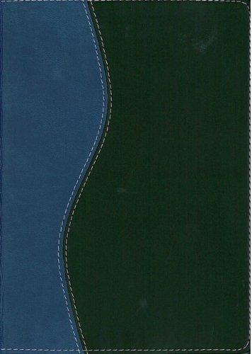 9780829744774: Biblia de Estudio 'Serie 50' RVR 1960, dos tonos italiano (Spanish Edition)