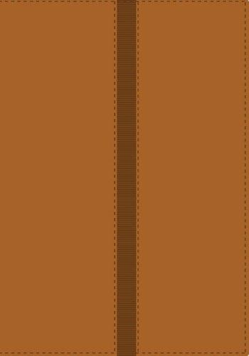 9780829754438: NVI Biblia de referencia Thompson, dos tonos italiano (Spanish Edition)