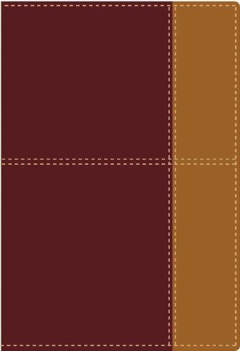 9780829754452: Biblia de referencia Thompson NVI (Spanish Edition)